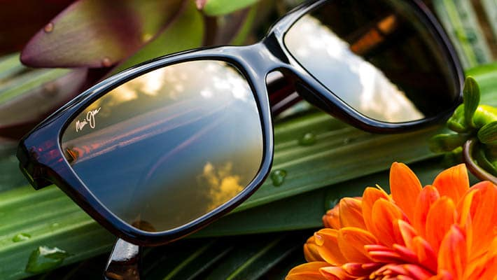 Maui-Jim-Beneficios-lentes-tecnologia-prevencion-cancer-de-piel-opticacliment-climent-valencia